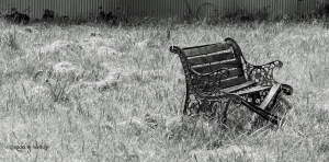 abandonedbench
